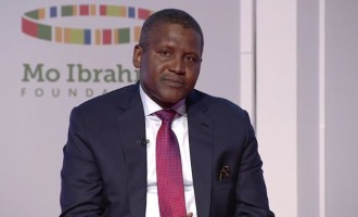 Dangote: We want to reach 1m malnourished children by 2021