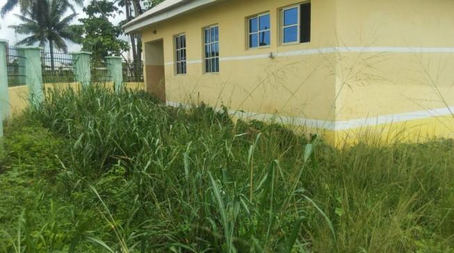 BudgIT Tracka intervenes as N15m Ozoro Primary Health Centre remains unutilised