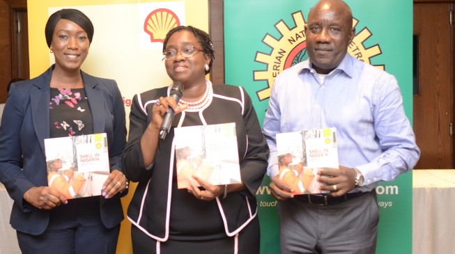 Shell 'contributed' over $30bn to Nigeria in four years