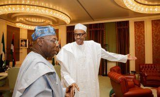 'This govt is confused' — Yet again, Obasanjo rebukes Buhari