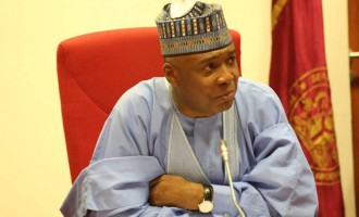 2019 presidency: PDP calls on Saraki, Kwankwaso to 'come back quickly'