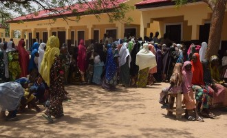 Hepatitis E 'kills four pregnant women in Borno,  400 IDPs infected'