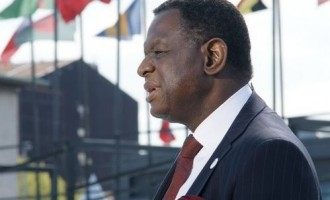 Nigeria 'proud to have produced' Osotimehin as UN pays glowing tribute