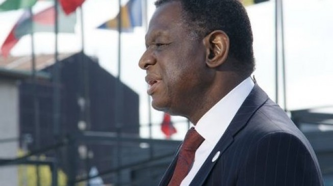 United Nations says population chief Babatunde Osotimehin died suddenly