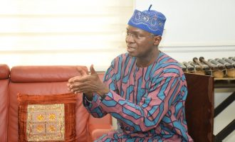 Fashola: 2000 megawatts of electricity currently idle