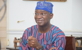 Jonathan ordered reversal of electricity tariff to win election, says Fashola