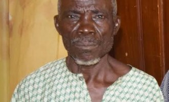 80-year-old man 'caught with human parts' in Osun