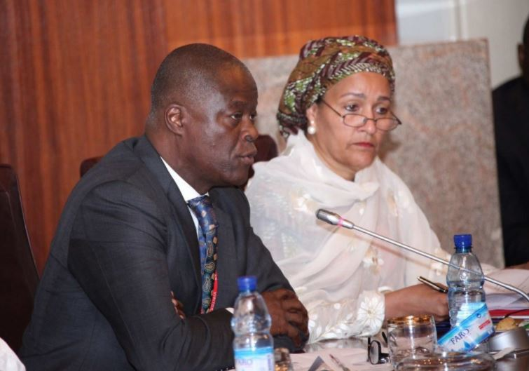 Wale Edun and Amina Mohammed