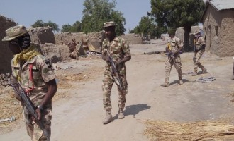 We've killed Shekau's deputies, says army
