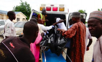 'Eight killed' in Borno suicide attack