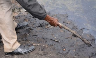 Ogoni clean-up: 'Nothing concrete has been done' — MOSOP gives FG December deadline