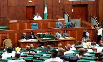 301 reps sponsor bills to halt concession of Ajaokuta steel