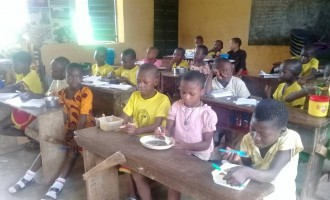 INVESTIGATION: Eating and learning — school feeding entices pupils to Anambra classrooms