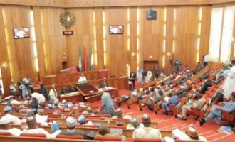 Donation of rice an insult, Kogi youth blast senate