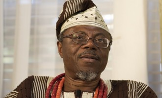Toyin Falola, Nigerian history and the African humanities