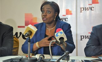 Adeosun: We don't care if oil prices rise or fall