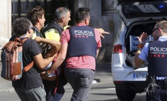 13 killed as van ploughs into crowd in Barcelona