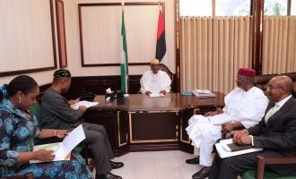 Buhari meets Adeosun, Emefiele, says he's happy with state of the economy