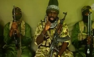 Army says Shekau is in a 'terrible' state of health