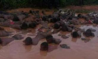 TRENDING VIDEO: Soldiers torture 'IPOB members'