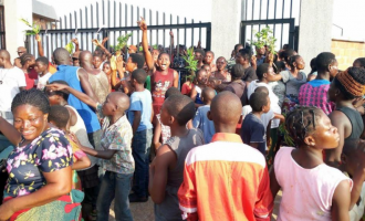 Journalist arrested 'over story on protest at Benue IDP camp'