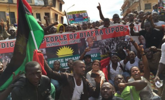 IPOB: Blame Buhari, Igbo leaders if we decide to take up arms