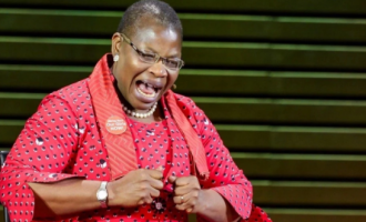 Oby Ezekwesili 'seriously praying' for warring Psquare