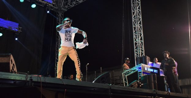 Fans revel as African stars perform at AFRIMA music village