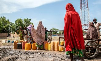 Borno IDPs: Soldiers raped us in camps but we were forced to deny it