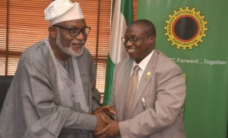 Biofuel project will create 1m jobs in Ondo, says Baru