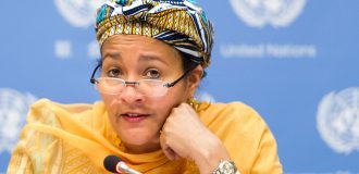 EXCLUSIVE: How I tackled illegal wood export and deforestation, by Amina Mohammed