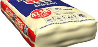 Dangote Cement: Profit breaks free from flat growth