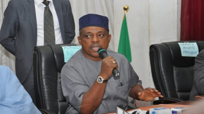 Secondus emerges PDP national chairman amid allegations of rigging