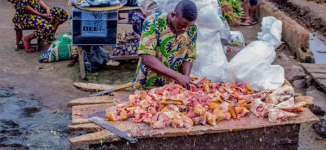 Unhealthy abattoirs in Nigeria –recommendations and solutions