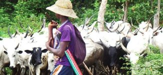 '10 killed' as 'herdsmen' hit Kogi again