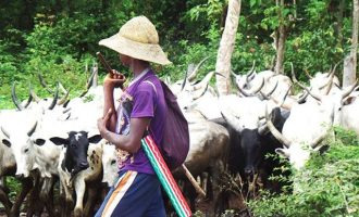 Monarch killed as 'herdsmen' raid Taraba villages