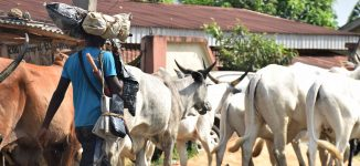 Buhari: Herdsmen attacks would be brought under control