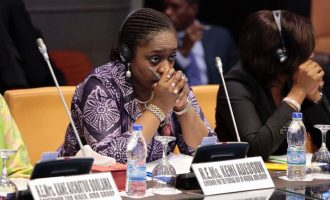Adeosun: Technically, there is no subsidy but 'under-recovery'