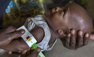 VIDEO: How UNICEF malnutrition programme is saving lives in northern Nigeria