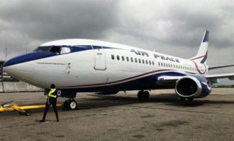 Drama as cows prevent aircraft from landing at Akure airport