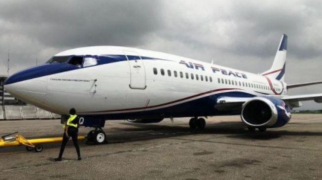Anxiety as cows take over Akure airport runway, delay flight landing