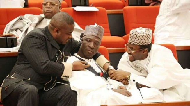 Ali Wakili: Senators suspend plenary in honour of deceased colleague