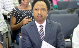 Shehu Sani on N2bn suit: El-Rufai can't intimidate me
