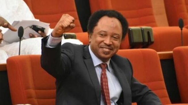 Image result for 'It's nothing new' - Senate reacts to Shehu Sani's revelation