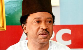 Apologise to el-Rufai's government or remain suspended, Kaduna APC tells Shehu Sani