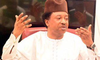$1bn security fund: Shehu Sani asks FG not to abandon the police