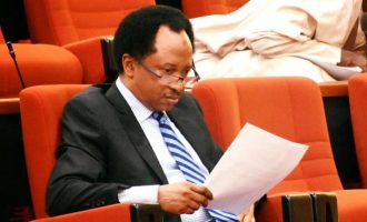 Nigeria gradually sliding into a totalitarian state, says Shehu Sani on invasion of senate