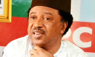 Shehu Sani: If I'm leaving APC, I'll make it known
