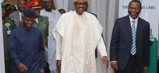 Femi Adesina: If Buhari contests in 2019, his opponents should just run away