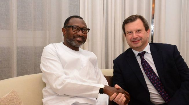 Image result for Femi Otedola canvasses for UK, US investments in Nigeria